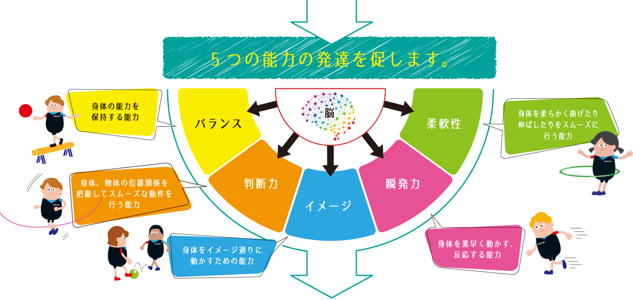 5つの能力が発達します!バランス、判断力、イメージ、瞬発力、柔軟性
