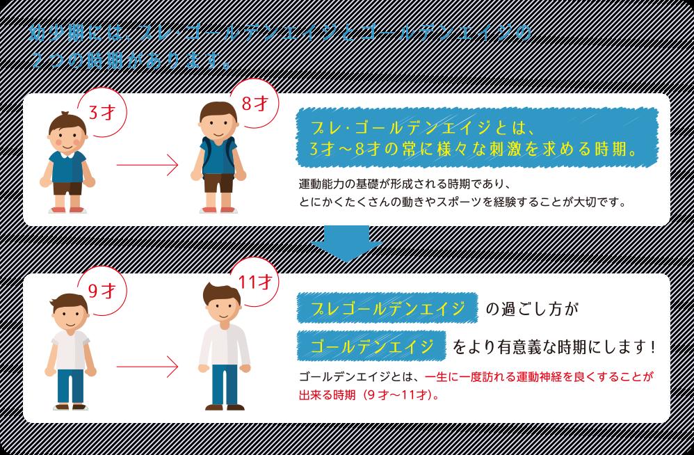 幼少期には、プレ・ゴールデンエイジとゴールデンエイジの2つの時期があります。